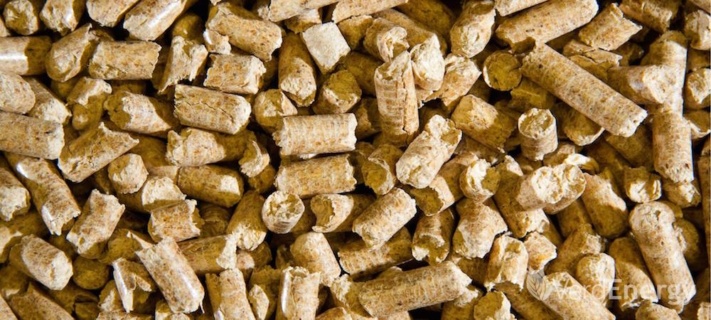 Verdenergy biomass wood pellets